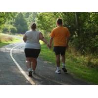 Исследование: чтобы жить - нужно ходить