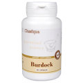 Burdock - Бурдок