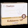 Echinacea - Эхинацея