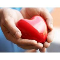 7 главных факторов влияния на здоровье сердца
