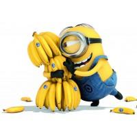 Диетологи: полезность бананов меняется в зависимости от их цвета.