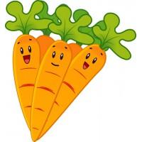 6 особенно полезных свойств моркови.