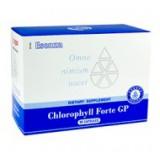 Chlorophyll Forte - Хлорофилл