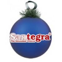 Москва офис SANTEGRA поздравление с Новым годом!