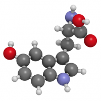 5 htp или гидрокси- L-триптофан.