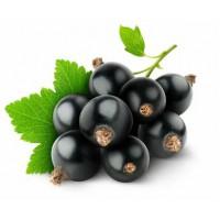 Врачи назвали самую полезную ягоду для организма.