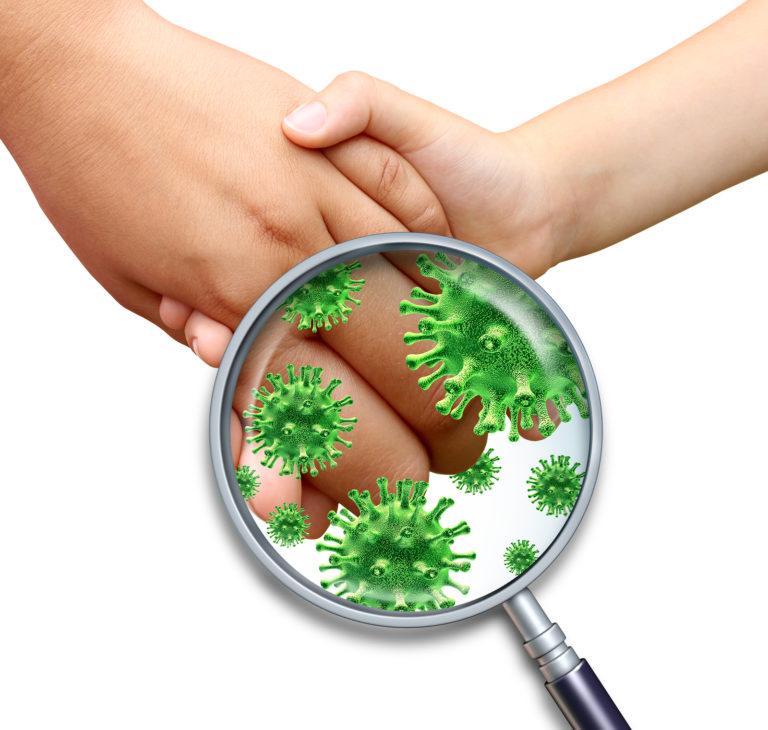 Сантегра против бактерий